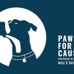 BC SPCA PAWS FOR A CAUSE 2019